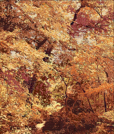 Gary Carsley ,   D.71 Central Park (Strawberry Fields)  ,  2007     Lambda monoprint ,  56 x 47.5 inches (142 x 121 cm)